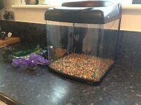 Fish tank with filter, gravel, cleaner etc