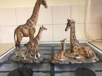 Giraffe ornaments
