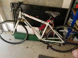 Men's Apollo Envoy Mountain Bike