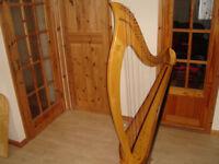 harp 36 strings by merlin madoc