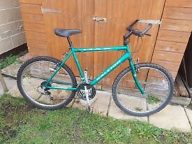 Gents Raleigh Mountain Bicycle in good condition