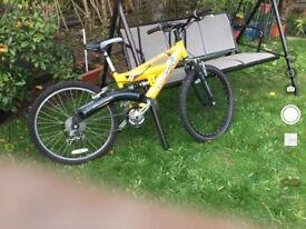 Barracuda Bike very good condition to sale