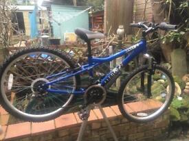 Dawes Banshee Mountain bike