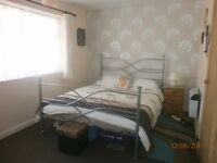 nice size double room to let