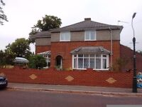 One Bedroom for rent in a detached home fronting a lovely Park