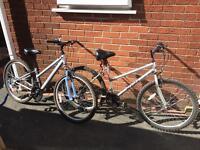 2 push bikes £20 each apollo & phantom