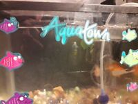 2 goldfish with fish tank, filter and air pump for quick sale