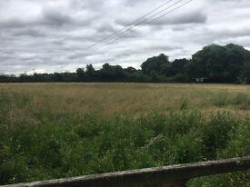 3 acres of grazing land Romsey