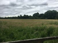 3 acres of grazing land Romsey