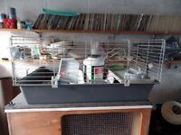Rabbit / Guinea Pig cage + hut