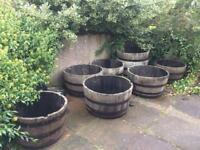 Scottish oak whisky barrel planters