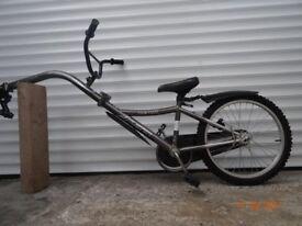 Childs Tagalong bike
