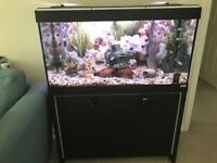 Tropical Fish Tank Aquarium As New Great condition upgraded filter and spare bulb