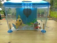 Small Fish Tank with Good Filter, lighting and various accessories