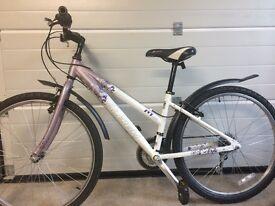 Raleigh girl's bicycle