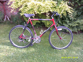 RALEIGH MUSTANG MOUNTAIN BIKE ONE OF MANY QUALITY BICYCLES FOR SALE