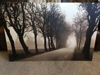 Large picture canvas