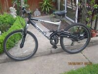 gents mountain bicycle