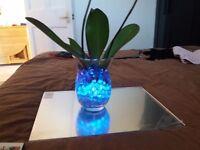 Light up flower vase