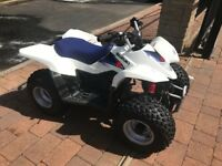 SUZUKI LTZ 50 FOR SALE MINT!!!