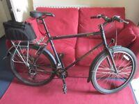 City bike Kona with cargo space