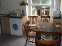 CENTRAL BRIGHTON - 1 STUDENT ROOM IN DELUXE FLAT, AVAIL NOW