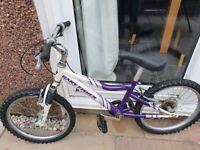 Kids Bike 16inch frame, ideal for 6-10yrs