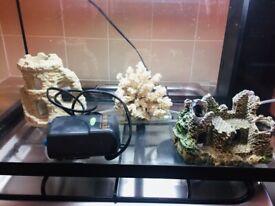 Juwell Fish Tank