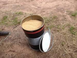 Stock feed Malt Combings. Dereel Golden Plains Preview