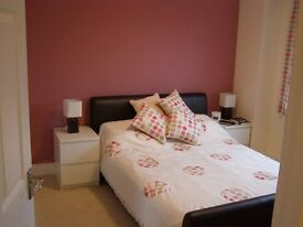 Conveniently located 1 bed, fully furnished apartment in Meadowbank, available 9 April