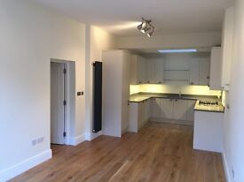 Beautiful newly converted 2 Bedroom flat in Ransomes Dock, Battersea, 3 mins from Battersea Park