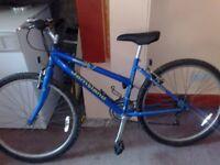 raleigh jamtland womans girls adult mountain bike