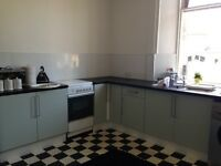 Spacious 1 bedroom flat for rent