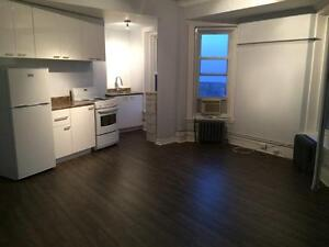 Apartment for rent close to McGill for January