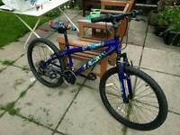 Kids child's mountain bike