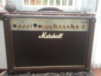 Marshall AS50R acoustic soloist amp.