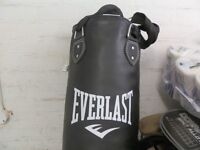 Everlast 48 inch Punch Bag