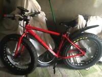 Maxi cooker fat bike