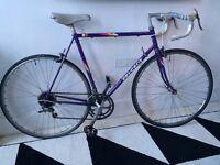 Peugeot vintage Reynolds 501 racer racing bike