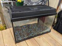 Fish tank ready to go!