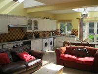 Clapham .Spacios double room in superb friendly houseshare
