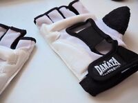Danata WTF Approved Sparring Gloves Taekwondo