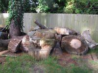 Large seasoned Log rings