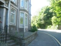 Raised Ground Floor Flat with Bay Window at Top of Lochee Road
