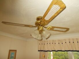 Excellent 3 speed ceiling fan with lights