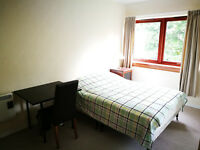 Double room to let rent close to KB royal informary for students / Professional