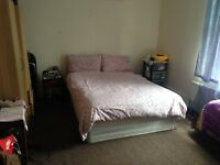 Near Startford Very Big size Double room rent for European females /professionals /couple