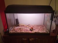 86l fish tank with filter, gravel & volcano bubble jet.