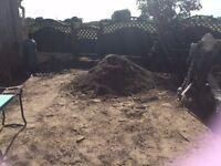 Good Quality Sandy Top Soil - Free.