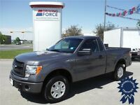 2013 F150 STX 4x4 - Short Box - 5.0L - Tow Package - 30,500 KMs